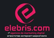 Elebris .com— планирование и продвижение бизнеса в Интернете